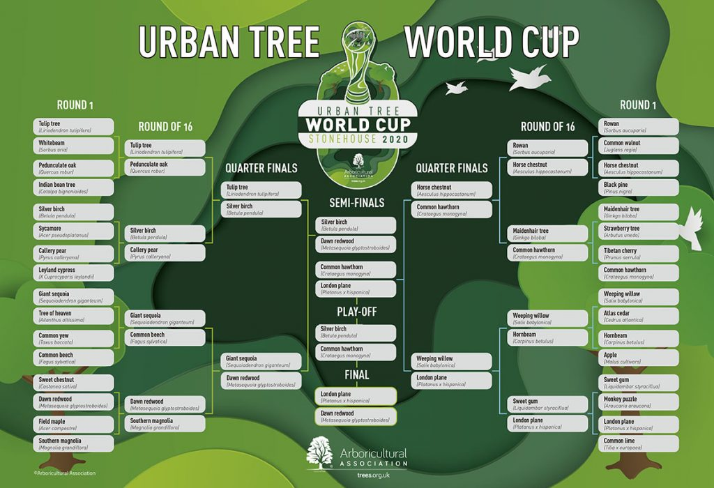 #UrbarnTreeWorldCup brackets. Organised by Arboricultural Association. Published at The Green Bee: Eco-Journalism. Author Juanele Villanueva. #UrbanTreeWorldCup